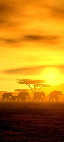 Bilderdepot24 Türtapete selbstklebend | Die Wanderung der Elefanten | in 90x200 cm | einteilig Türaufkleber Türfolie Türposter | Wand-deko Dekoration Wohnung | 11246a