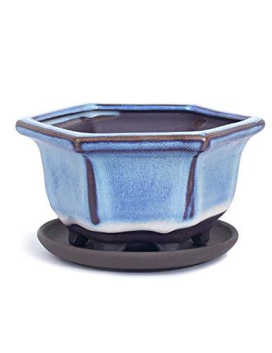 Dahlia 4.3' Ceramic Succulent Pot/Bonsai Pot w Drainage Hole & Detachable Saucer, Hexagon