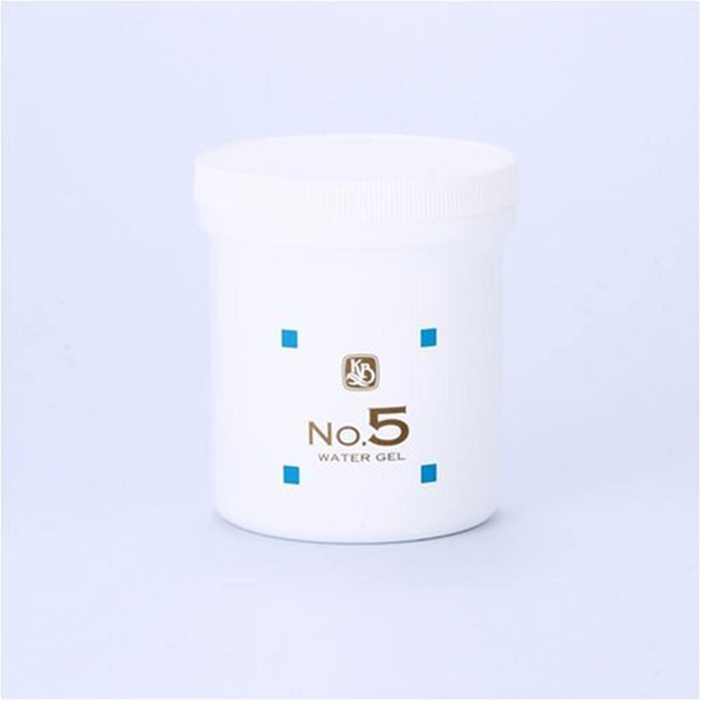破滅電池二週間顔を洗う水シリーズ ウォーターゲルNo.5 500g