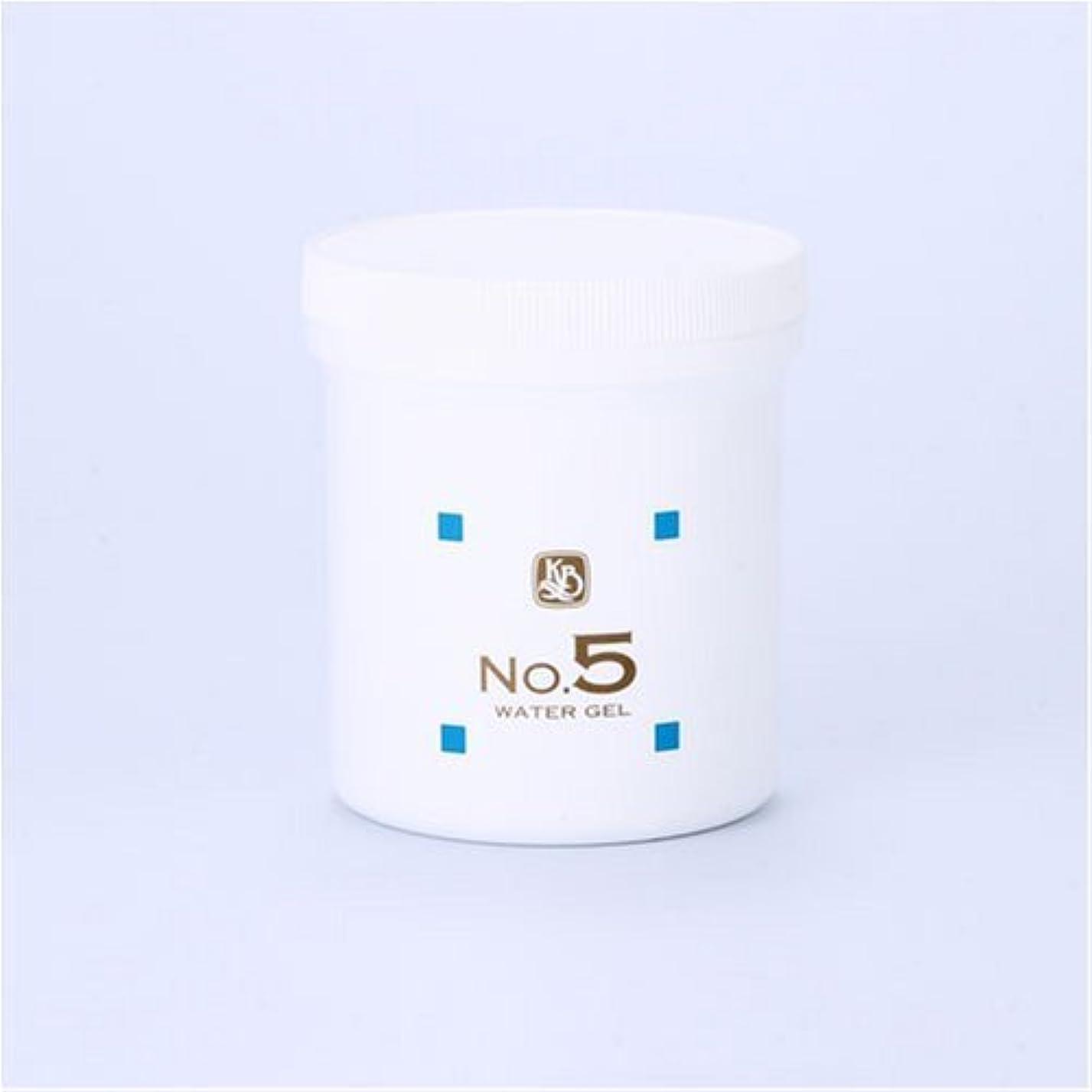 アルファベット十トランジスタ顔を洗う水シリーズ ウォーターゲルNo.5 500g