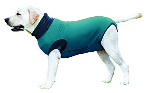 MAXX Medical Pet Clothing & Recovery Dog Shirt E Collar Alternative for Post Surgery, Wounds and Bandages- (M+, Pea Blue)