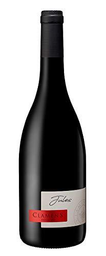 Vino del Sud Ovest della Francia: una bottiglia di'Jules' rosso 2018