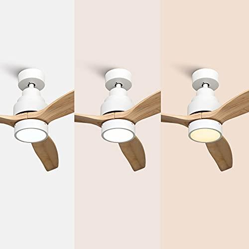 Mellerware Ventiladores de techo