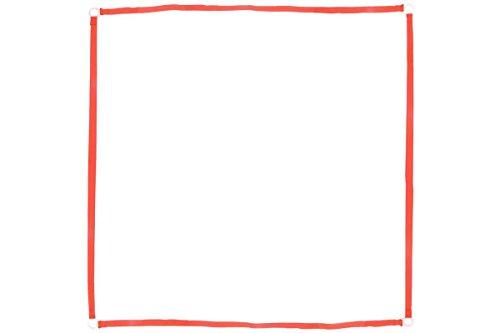 Obedience-Boxband FCI-konforme Länge, 25mm breit, UV-stabil, incl. Erdhaken rot