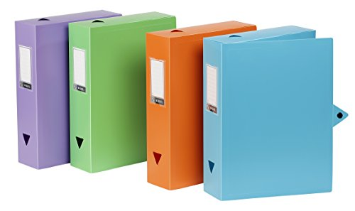 Viquel - Lot de 6 boites de classement en plastique - Lot 6 boites à archive fermeture bouton pression - Boites de rangement assorties - Dos de 8 cm - Fabriqué en France