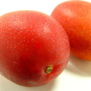 宮崎県産 完熟マンゴー 大玉2個入り ( 1個:350〜430g )