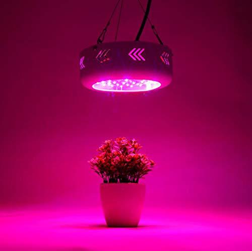 Gymqian LED Grow Light 150W, Lámpara De Cultivo De Plantas Premium Con Espectro Completo, Luz De Planta De Chips Dobles Para Plantas De Interior Vegetales Y Flores, Función De Cadena De Margaritas