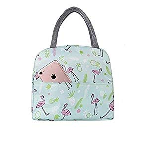 Trexee Women Portable Lunch Bag Portable Insulated Canvas Tote Travel Tiffin Bag Thermal Food Canvas Stripe Insulated Cooler Bags Thermal Food Picnic Lunch Bags Kids for Office, College & School