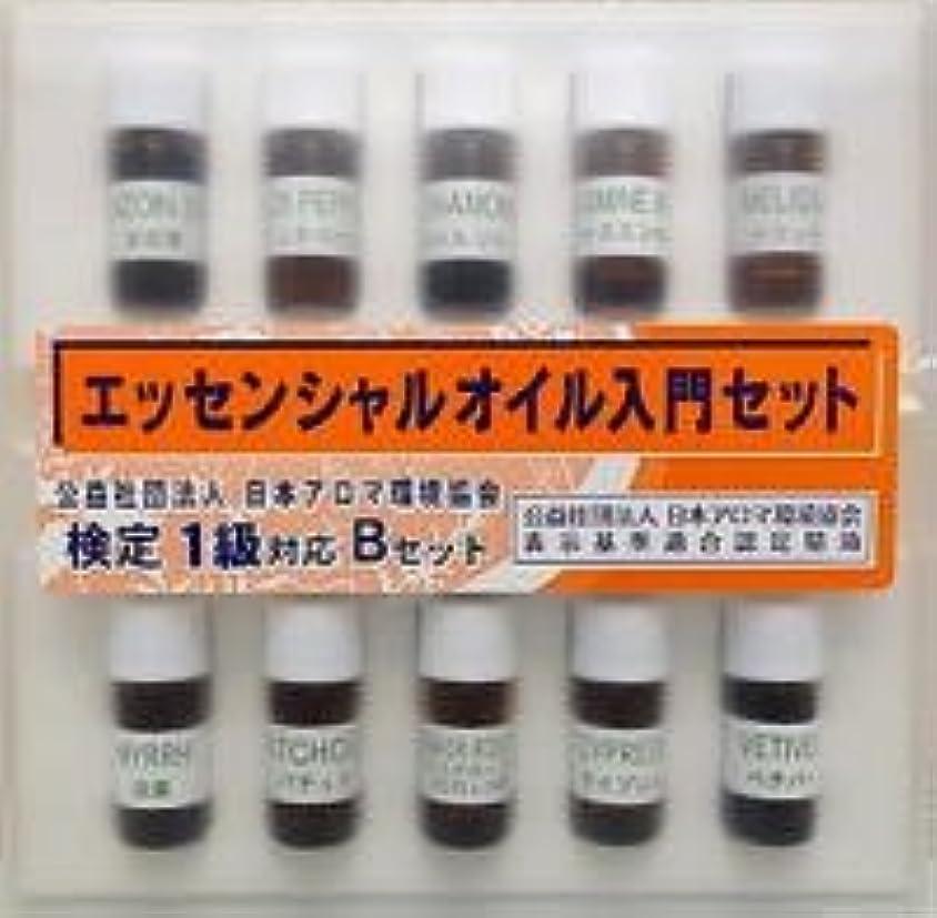 お風呂素子スーツケース(生活の木) 検定1級対応 (リニューアル版) Bセット (プロフェッショナルセット)