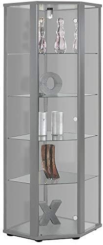 BR-Wohndesign Glasvitrine Sammlervitrine Eckvitrine Vitrine in Silber Alu (Dekor) mit 4 Glaseinlegeböden Nicht höhenverstellbar und Beleuchtung