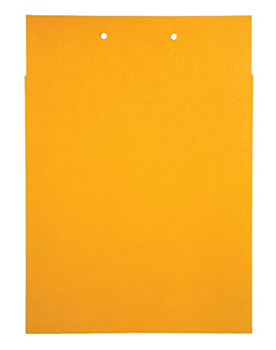 Classification Pockets with One Inch Expansion, 6 Point Kraft, Brown, 100/Box