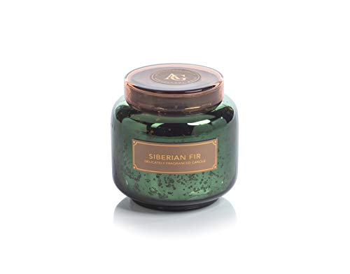 Zodax Apothecary Guild Mercury Glass Candle Jar with Lid 14.5 Ounce - Siberian Fir