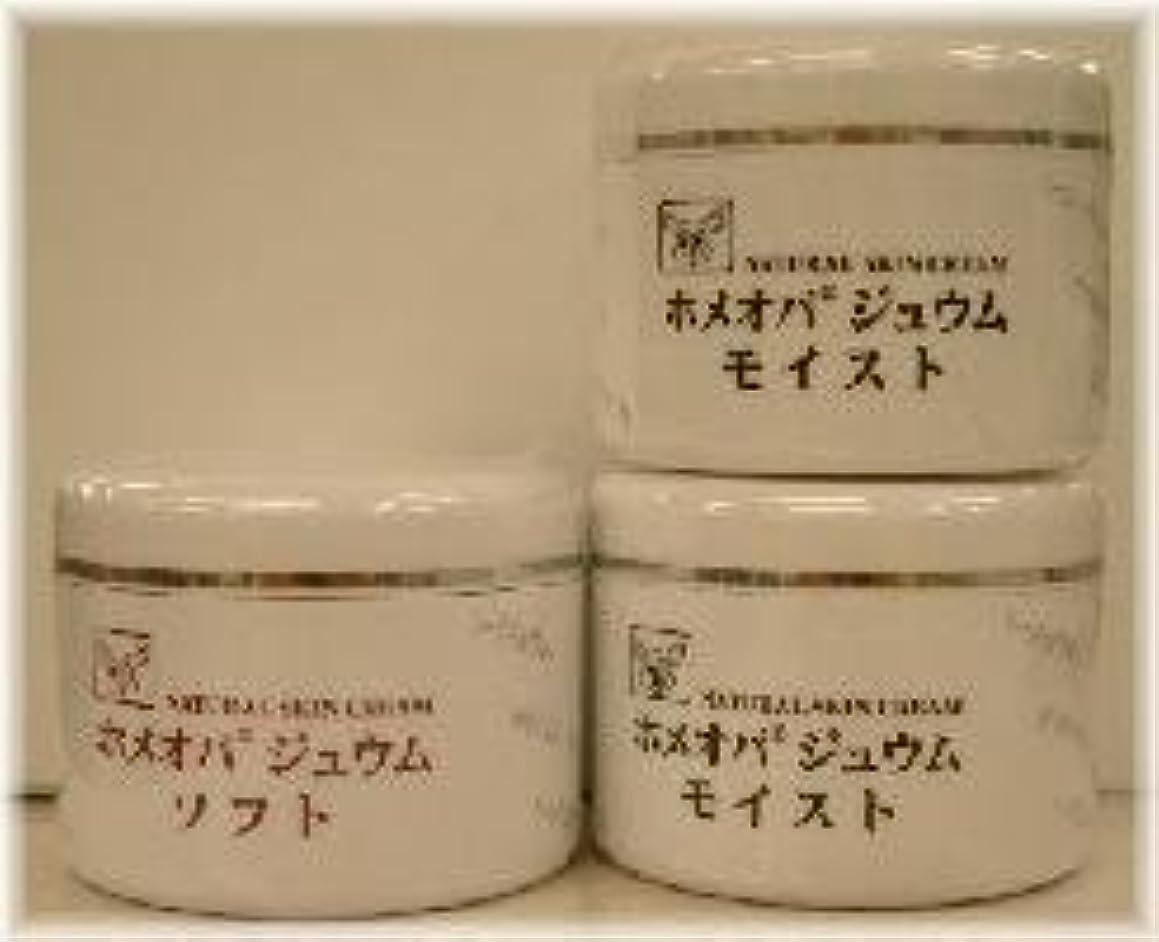 セメントコンサルタントトランクライブラリホメオパジュウム スキンケア商品3点 ¥10500クリームモイスト2個+クリームソフト