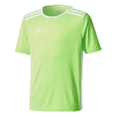 adidas Boys' Standard Entrada 18 Jersey, Solar Green/White, Large
