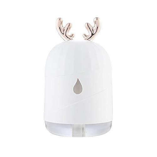 QZA,Crema hidratante de Piel Ultra-Recargable: Spray Facial, rociador de Nano-Mist, Spray Facial portátil para una hidratación Profunda, Banco de energía USB Recargable,Sprayerwhite