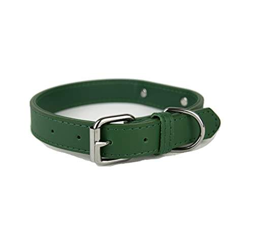 Collare per cani in morbida pelle imbottita con targhetta in metallo e anello a D, collare per cani di taglia piccola, media e grande (M, Verde)