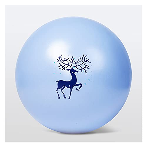 Takagawa HHH 25 65 cm Bolas de Yoga Bola Pilates Pilates Ball Gimnasio Balance Fitball Ejercicio HHH (Color : 25 cm Cute Deer)