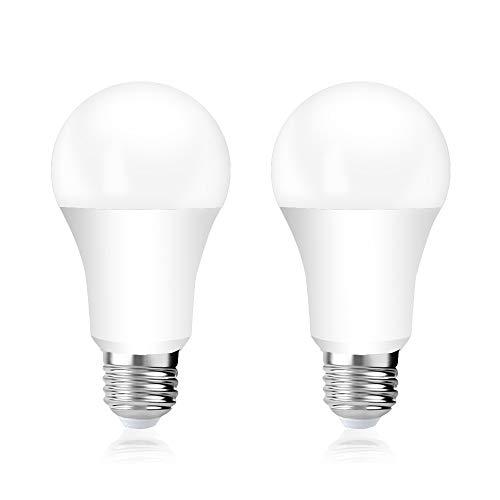 Luxvista Lampadina E27 LED 8W, Bassa Tensione AC/DC 12V-24V Bianco Fredda 6000K, A60 LED Edison ES Vintage Incandescenza 70W Equivalente, Lampada Globo Non-Dimmerabile Per Camper Barca (Pezzi da 2)