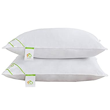 DUO-V HOME Pillows for Sleeping 2 Pack Luxury Hypoallergenic Bed Pillows Hotel Quality with 100% Cotton Cover, Soft and Firm, Standard, Queen, King (Queen)