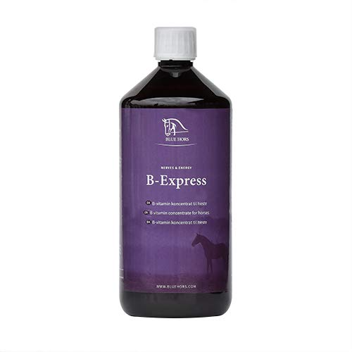 Blue Hors B-Express - Vitamin B für Pferde und Ponys; Ergänzungsfutter, Zusatzfutter, im Fellwechsel, Futterwechsel, Mattheit, Nervosität, Vitaminkonzentrat