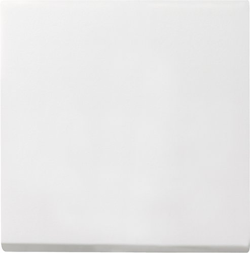 Gira 029627 System55 Wippe Wechselschalter reinweiß matt