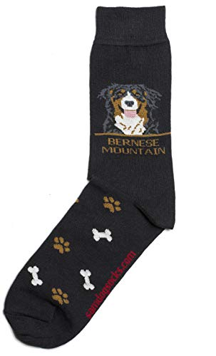 Bernese Mountain Mens Socks