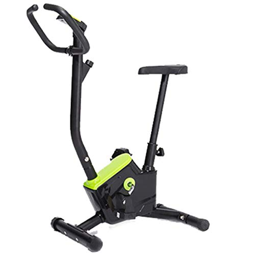 FEFCK Indoor Exercise Bike Spinning Bike Home Silent Pedal Fitness Equipment, Professional Aerobic Trainer Best Gift