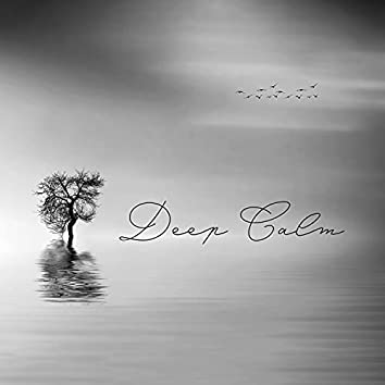 Deep Calm: Good Night Piano Music Session