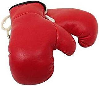 2 Stück Miniboxhandschuhe f Autospiegel Mini Boxhandschuhe USA Amerika 1 Paar