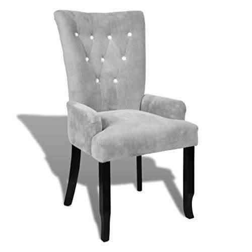 WT Trade Design Sessel mit Armlehnen und Samt-Bezug | Polstersessel in Silber | mit Eiche-Holzrahmen...