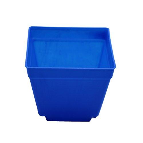 Adhere To Fly Lot de 10 pots de fleurs carrés en plastique - Finition brillante - Pour intérieur - Bleu - 10 cm