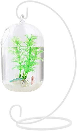 Transparante glazen hanger tank aquariumvissen infusiefles vaas fabriek vaas voor woninginrichting (bevat alleen glazen kom)