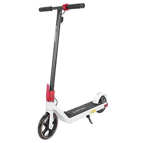 GoZheec FIIDO M1 Bici ElettricA Pieghevole per Adulti, velocità Massima 24km/h, Motore 250W, 3 modalità di velocità (Nero)