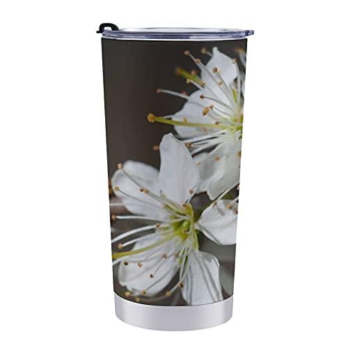 Vaso de acero inoxidable de 20 onzas con aislamiento al vacío, taza de viaje de doble pared con tapa a prueba de salpicaduras, sin BPA, cojín de tiro de flores de espino