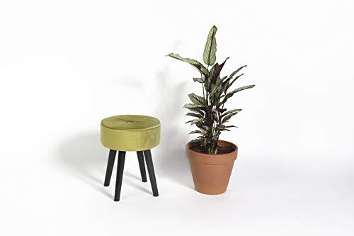 LIFA LIVING beklede kruk, zitkruk olijfgroen, stabiel & comfortabel, MDF-hout & SAMT, 42 cm, 32 x 35 x 42 cm