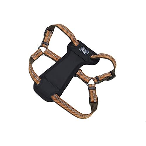 Coastal - K-9 Explorer - Reflective Adjustable Padded Dog Harness, Campfire Orange, 1' x 20'-30'