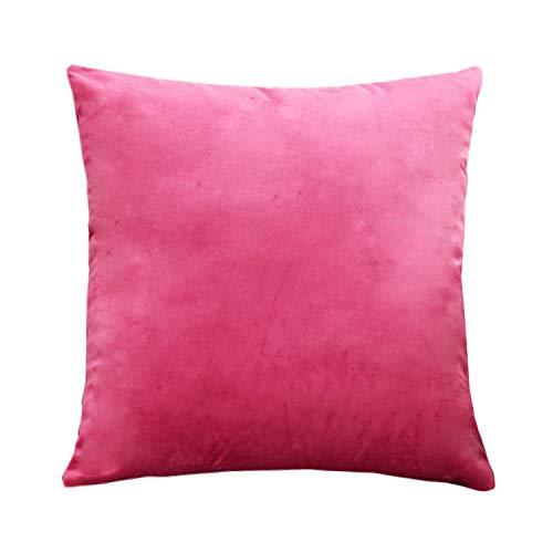 WOWEI Fundas de Cojines Terciopelo Square Color Sólido Funda de Almohada Cremallera Oculta Decoración para Hogar Sofás Camas Coche Sillas,Rosa Rojo,45X45 CM