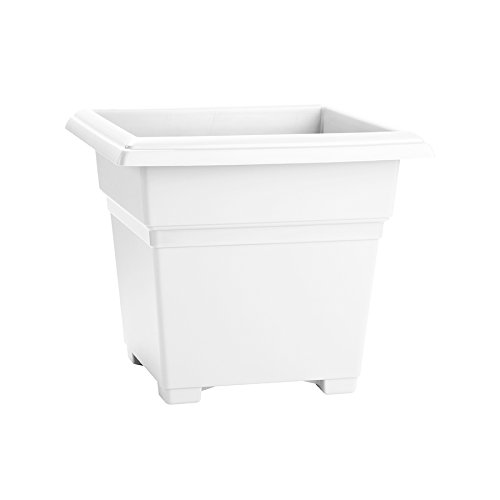Novelty 26142, White, Countryside Square Tub Planter, 14-Inch