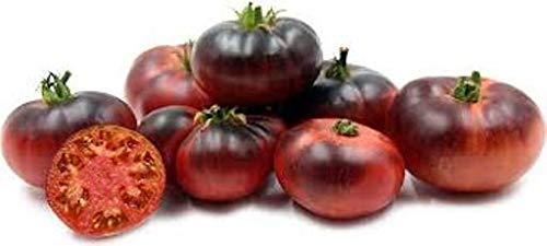 Portal Cool Tomate Indigo, azul, dulce, semillas semi, semi 30, tomate