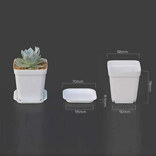 NA Vase Jardin Pots en Plastique Pots De Fleurs + Plateau en Plastique Vase Carré Fleur Bonsaï Planteur Pépinière Pots 7 Couleur Jardin Fournitures Blanc