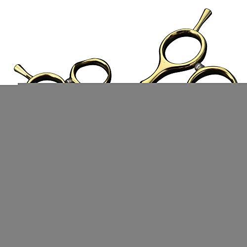 WUYUESUN Tijeras de peluquero, portátil de acero 440c Japón y tijeras durables, tornillo de ajuste tijeras de la personalidad del diamante verde, oro (juego tijeras)