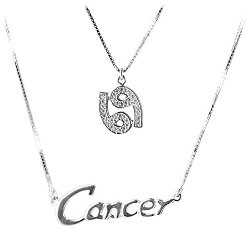 WOZUIMEI Collar de Estilo Chino S925 Plata Esterlina Coreana Simple Constelación Símbolo Carta Collar Cadena de Clavícula FemeninaCapricornio