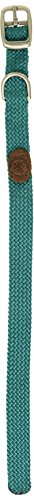 "Mendota Double Junior Collar, Teal, 9/16"" Up to 12"""