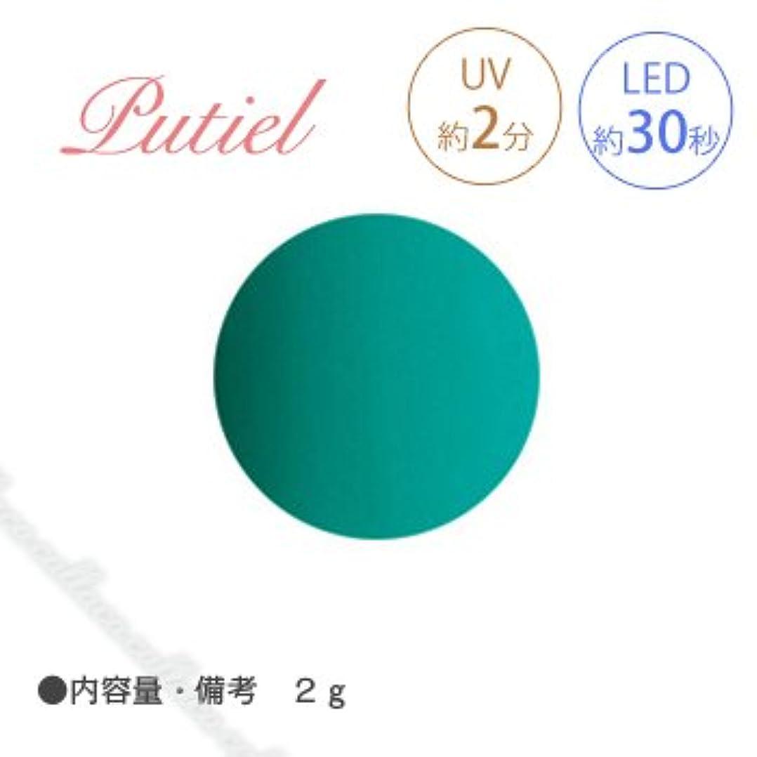 ボイコット療法チェスをするPutiel プティール カラージェル 133 ナイルブルー 2g