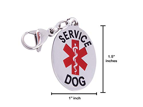 Doggie Stylz Service Dog Cat Official ID Tag. Hang from a Collar, Vest, Harness or Leash. Great Form of Identification for Small to Large Breeds Service Dogs Protected by Federal Law