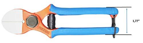 Due BUOI Cuchillas forjadas de Doble Corte SECATEURS Art. 133/20 con Doble Hoja de Espalda Plana, Manualidades y poda para scions