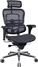 Raynor/Eurotech ErgoHuman ME7ERG Black Mesh Executive Chair w/ Headrest