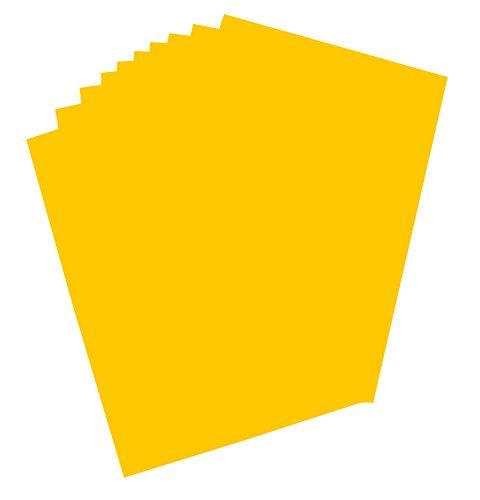 Folia 65611 Plakkarton, ca. 48 x 68 cm, 10 vellen, 380 g/m², eenzijdig goud gekleurd - ideaal voor het knutselen of maken van posters en displays.