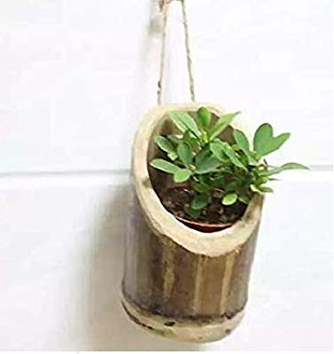COIR GARDEN Bamboo Hanging Bamboo Planters with Rope, 17-20 cm, Pack of 1