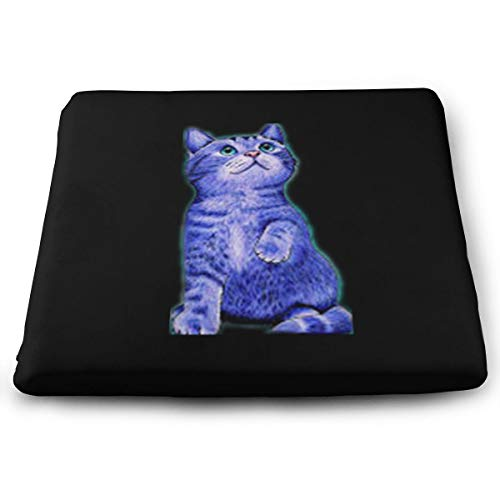 Arehji Shine Cat Soft Square Asiento Cojín Decoración Silla Cojín Transpirable Cubierta